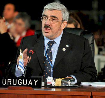 Milton Romani en la ONU. Foto: archivo web PVP.